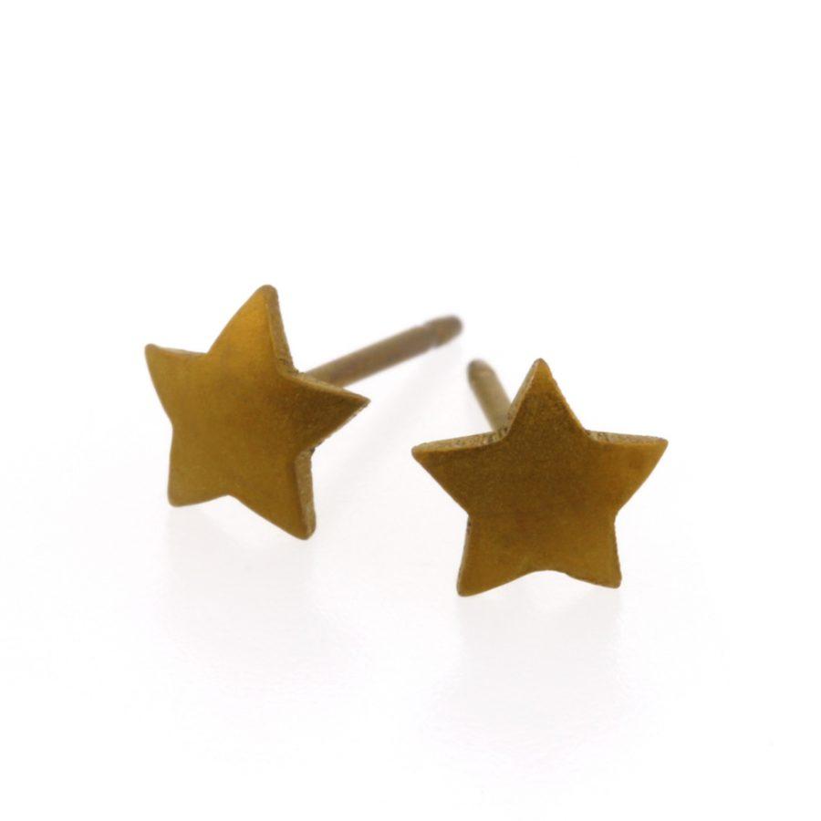 Ti2 Titanium 6mm Tan Star Stud Earrings