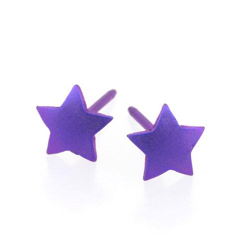 Ti2 Titanium 6mm Purple Star Stud Earrings