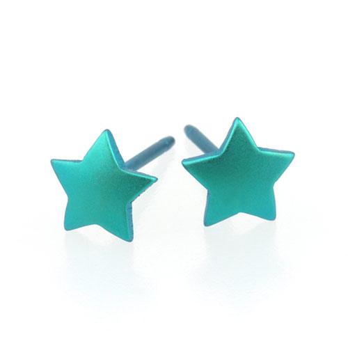 Ti2 Titanium 6mm Kingfisher Star Stud Earrings