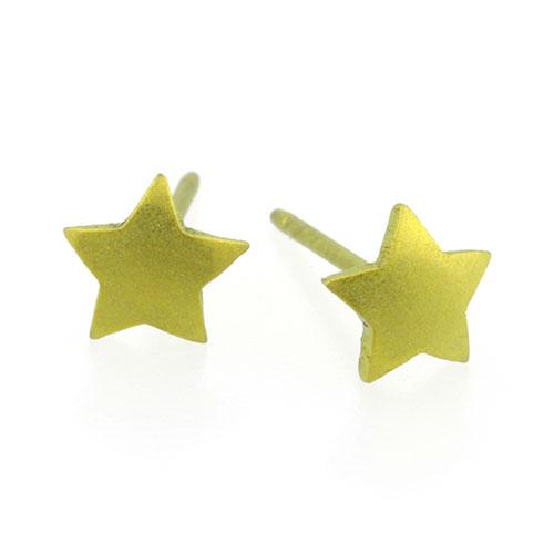 Ti2 Titanium 6mm Yellow Star Stud Earrings