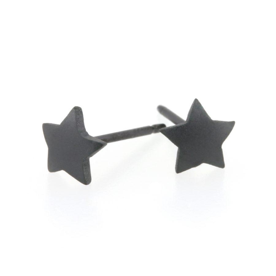 Ti2 Titanium 6mm Black Star Stud Earrings
